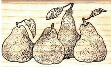 Stamp Cabana ~ ROW OF PEARS ~ Wood Mounted Rubber Stamp Fruit Nature