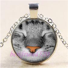 Sleep Cat Face Photo Cabochon Glass Tibet Silver Pendant Necklace#B22