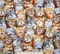 Timeless Treasures  Funny Selfie Cats Packed 100% cotton fabric by the yard