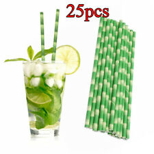 25pc Bamboo Paper Straws Party Wedding Bar Supplies Biodegradable Drinking Straw