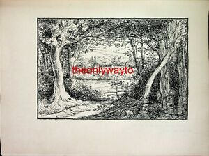 Glade, Epping Forest, Selwyn Image, Book Illustration (Print), 1901