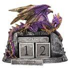 Nemesis Now - GOTHIC DRACONIC DESK CALENDAR - Nightwynd Dragon