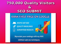 750,000 Real Visitors and SEO Submit Website Web Advertising
