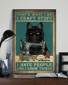 That's What I Do I Craft Stuff I Hate People And I Know Things Black Cat Poster