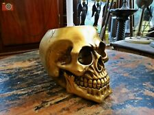 More details for gold brush with death, toilet brush & holder. gothic skull, bathroom decor. loo