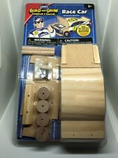 LOWE'S BUILD and GROW Wooden Race Car Kit