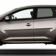 Fits Nissan Murano 2009-2014 Dawn Color Insert Painted Body Side Door Moldings