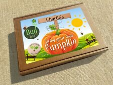 PERSONALISED CHILDREN'S / KIDS SEED BOX KIT - EASY GROW YOUR OWN PUMPKIN BUDBOX
