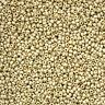 Miyuki 11/0 Seed Beads 11-4201F Duracoat Galvanized Matte Silver 24g (N20/2)