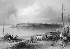 CANADA Navy Island above Niagara Falls - 1840s Engraving Print by BARTLETT