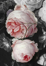 18th Century Painting Pink Roses French Provincial Shabby Chic Canvas Print A3
