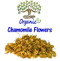 Organic Chamomile Flowers whole natural botanical herb tea Hungerian German Wild