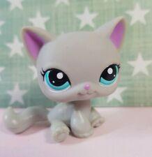 Littlest Pet Shop Figur #2185 Shorthair Cat LPS