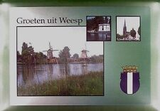CPA Holland Weesp Windmill Moulin Molen Windmühle Molino Mill Mole Wiatrak w381
