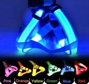 Light Up LED Pet Dog Harness Safety Multiple Colours Nylon Rope Belt Collar S-M