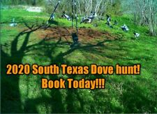 🎯🎯South Texas🕊 Dove🕊 hunts for 2020 (Jourdanton Tx.)🎯🎯
