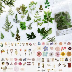 40pcs Washi Paper Sticker Cute Plant Decorative Scrapbooking DIY Stickers Crafts