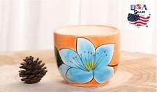 Succulent Plant Flower Ceramic Pot