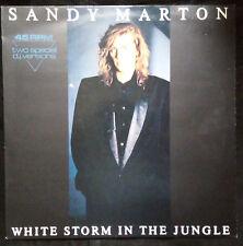 "SANDY MARTON - WHITE STORM IN THE JUNGLE 12"" GERMAN PRESSING"
