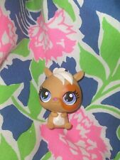 Littlest Pet Shop Lps Hamster #3300 Cute