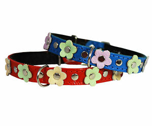 """Genuine Leather Designer Dog Collar, Daisy, Studs Fits 10""""-13 neck Chihuahua"""