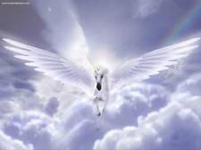 Unicorn Healing System/Reiki Attunement/release negativity/pdf manual on cd