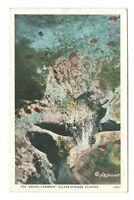 Bridal Chamber Silver Springs Florida Vintage Postcard AN92