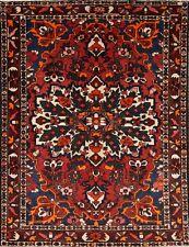 "Great Condition Geometric 5x7 Bakhtiari Persian Oriental Area Rug 6' 7"" x 5' 1"""