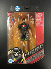 DC Comics Multiverse The Flash and The Atom