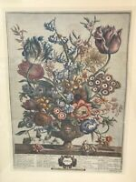 H Fletcher April 5459 Multi Color Framed Botanical Flowers Engraving Painting