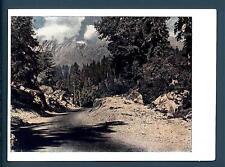 URSS - RUSSIA - 1959 - CARTOLINA POSTALE -  Strada nel bosco - 25  koneek