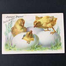 CPA 1905 Joyeuses Pâques Poussins Oeuf Carte Ancienne Easter Antique Postcard