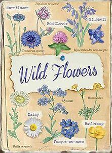 Wild Flowers small steel sign  200mm x 150mm  (og)
