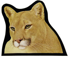 Cougar stained glass fragment, kilnfired stained glass, mountain lion suncatcher