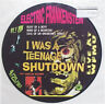 Electric Frankenstein - I Was A Teenage Shutdown PICTURE DISC LP New Jersey Punk