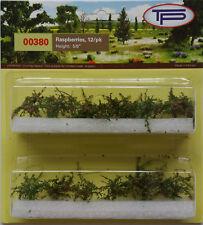 Tasma Products - Raspberry Plants (12) for 00/HO Model Railway