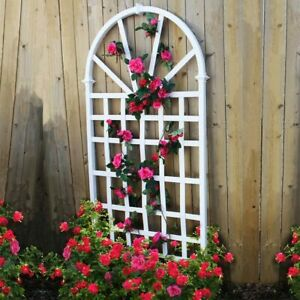 Traditional Look England Arbors Athens Trellis For Climbing Roses or Vegetables