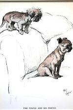 Cecil Aldin PIMPLE and FRIEND 1930 Matted PEKINGESE PUPPY DOG Print