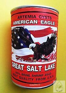 Brine Shrimp Egg FRESH Artemia Cysts 450 g. USA American Eagle Great Salt Lake