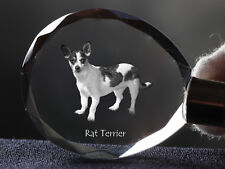 Rat Terrier, Dog Crystal Round Keyring, High Quality, Crystal Animals Ca