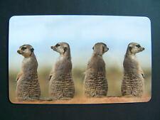Frühstücksbrettchen Erdmännchen Quartett Schneidebrett Brettchen 23x14cm Tier NW