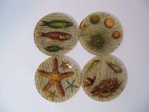 Notions Starfish Glass Canapes Plates Fish Sea Urchin Shells Ocean - Set of 4