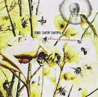 The Low Lows-Shining Violence CD   Excellent