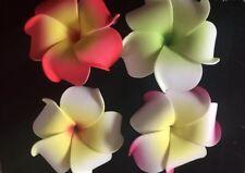 Hawaiian PLUMERIA FLOWER FOAM HAIR CLIPS  Mixed Colors Wedding Bridal Luau Prom