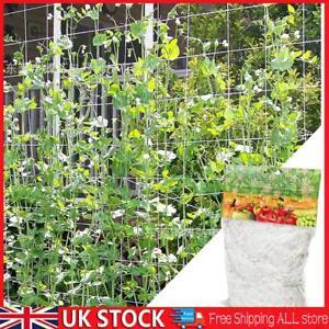 Garden Plant Climbing Trellis Netting Support Grape Vine Grow Netting Polyester