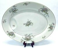 "Theodore Haviland NY Apple Blossom Pattern Large 16.25"" Oval Meat Platter"