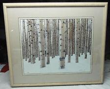 "Winter Aspens Limited Edition Framed Art Photo by Aaron Goldenberg 24""X27"" Frame"