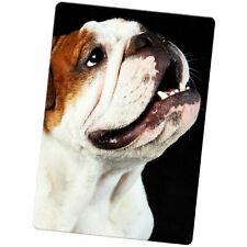 British English  Bulldog Large Fridge Magnet