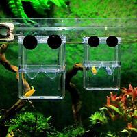 1X Aquarium Guppy Double Breeding Breeder Züchtung Trap Box Hatchery I2O4 X E9J1