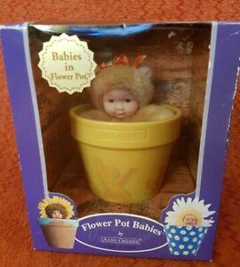 Anne Geddes  Flower Pot Babies Plush Baby Bear Doll In Box Down In Garden